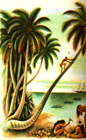 Chris Hedges and Herman Melville Assault the Fruits of 'Enlightenment'