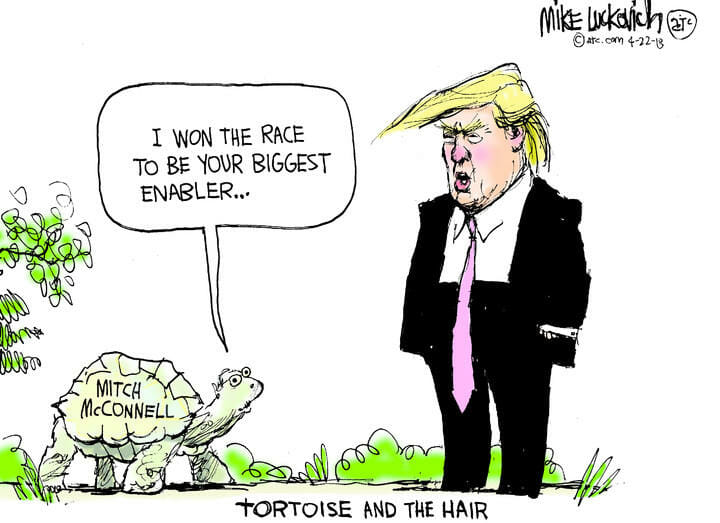 Tortoise and the Hair